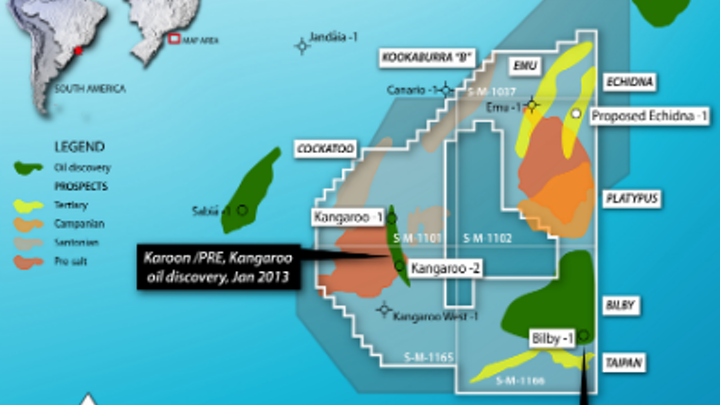 The Kangaroo and Echidna prospects off Brazil.
