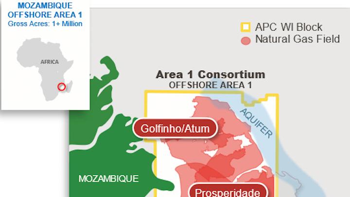The deepwater Golfinho/Atum gas development in Area 1 off Mozambique.