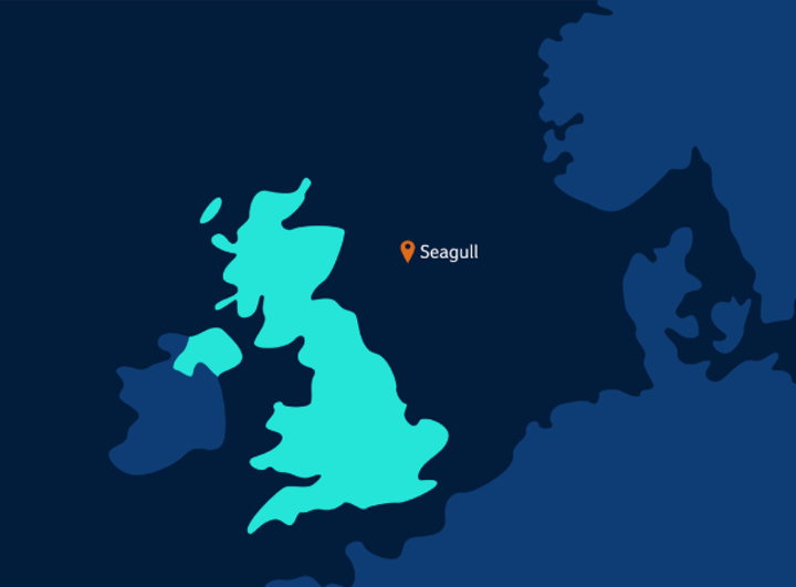 Seagull is in the UK central North Sea.