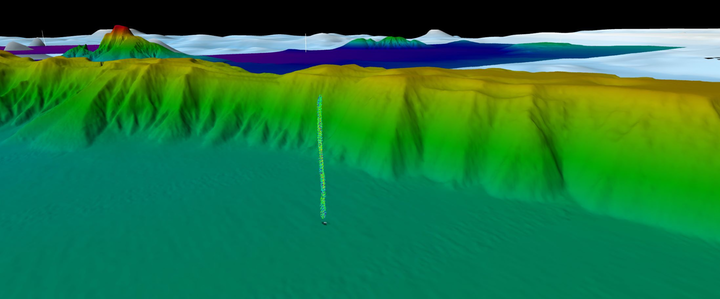 3D rendering in Fledermaus of Sarawak bathymetry showing a water column anomaly indicative of active gas seepage.