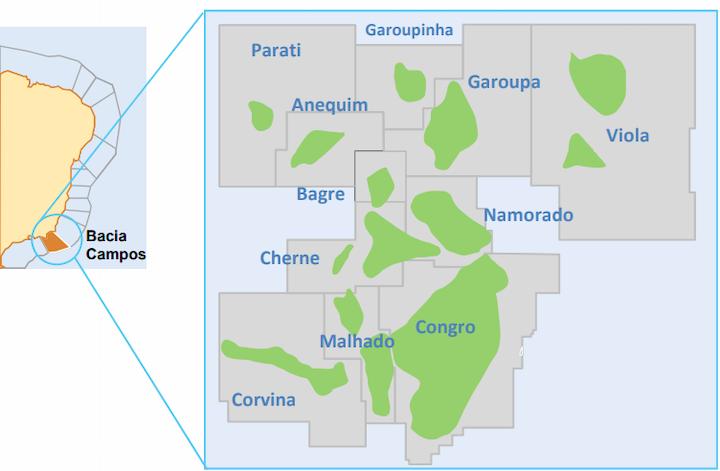 The Garoupa Cluster in the Campos basin comprises the Anequim, Bagre, Cherne, Congro, Corvina, Malhado, Namorado, Parati, Garoupa, Garoupinha and Viola fields.